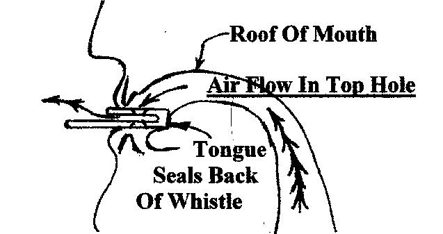whistleinstructions.jpg